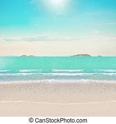 熱帯 浜, 海洋