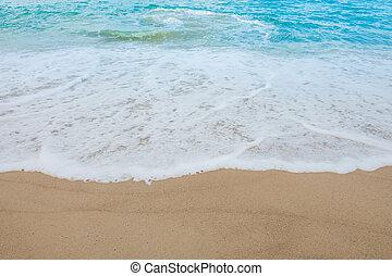 熱帯 浜, 海
