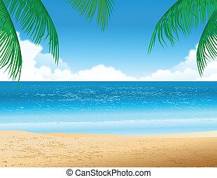 熱帶的海灘