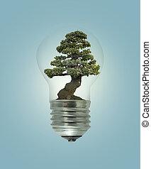燈泡, 光, 由于, 綠色的樹, 裡面