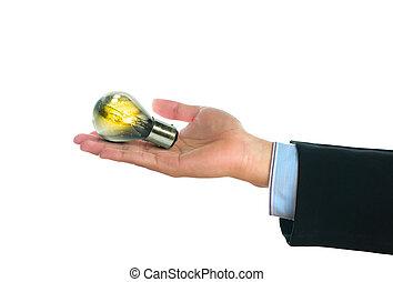 燈泡, 由于, 小, 植物, 生長, 裡面