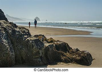 父, 浜, 歩きなさい, 娘