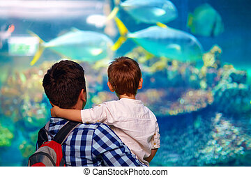 父, oceanarium, 息子