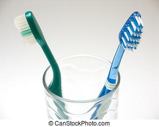 牙齒的健康