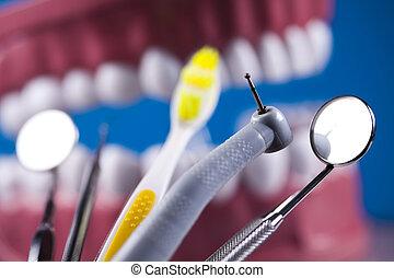 牙齒, 醫治, 附件