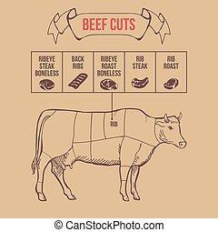 牛肉, 型, 肉屋, ベクトル, 切口, 案