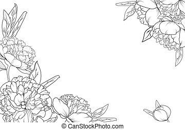 牡丹, 上升, 花園, 花, 角落, 邊框, 框架