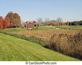 牧草地, そして, 農場