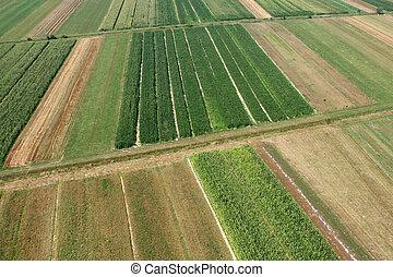 牧草地, そして, fields., 航空写真, イメージ