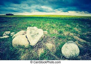 牧草地, 写真, 春, 緑, 型, 風景