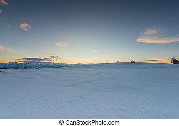 牧草地, 空, 雪, ムード, 白熱, 日没, 冬
