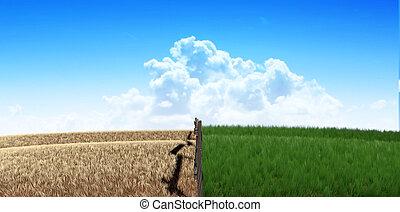 牧草地, 緑, フェンス