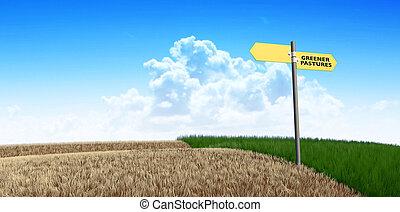 牧草地, 緑, 印