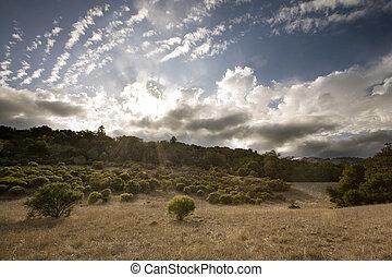 牧草地, california 日の入