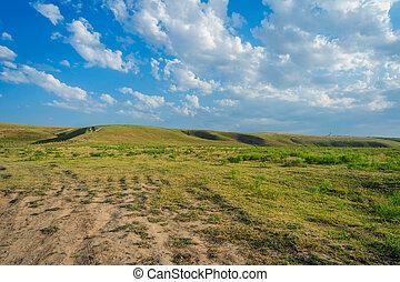 牧草地, kazakh, ステップ, 風景, 無限