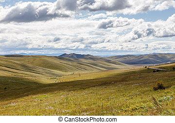 牧草地, mongolian, ステップ
