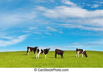 牧草, 子を産む