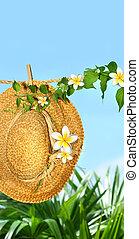 物干し綱, わら帽子, frangipani, 夏, 花