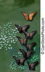 特別, 蝴蝶, 主要, a, 組, ......的, 發展, 蝴蝶