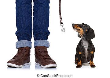 犬, そして, 所有者, ∥で∥, 革ひも