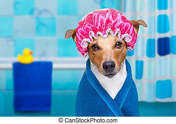 犬, エステ, シャワー, ∥あるいは∥, wellness