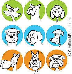 犬, コレクション, 顔