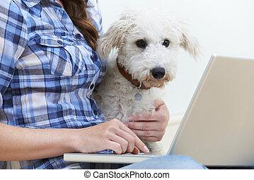 狗, 坐, 在旁邊, 所有者, 使用便攜式計算机