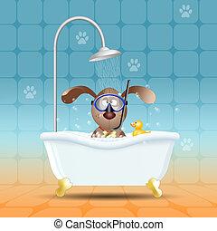 狗, 由于, 潛水面具, 在, 浴室
