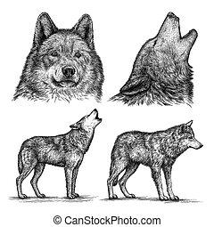 狼, イラスト, 刻みなさい