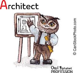 猫头鹰, 字母表, 职业, 性格, watercolor, 矢量, 建筑师, 背景, 白色