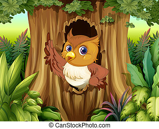 猫头鹰, 树, 洼地