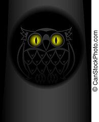 猫头鹰, 眼睛, 发光