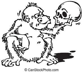 猴子, 以及, skull_black
