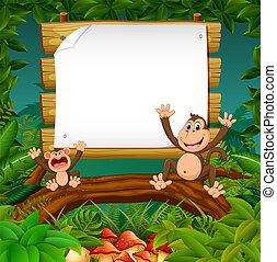 猴子, 空間, 木制, 自然, 二, 看法, 板, 空白, 愉快, 森林