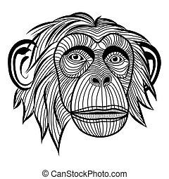猴子, 黑猩猩, 猿, 頭, 動物,