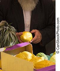 猶太, 秋天, 假期, sukkot