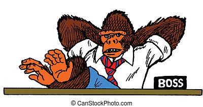 猿, 老板