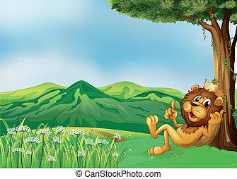 王, ライオン, 弛緩, 丘の上