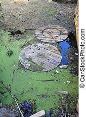 环境, 污染, -, 垃圾, 在中, a, 小的湖