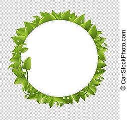 环绕, 带, 绿色, 叶子