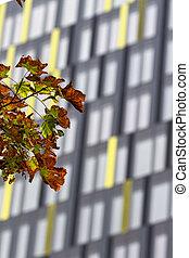 现代, 公寓建筑物