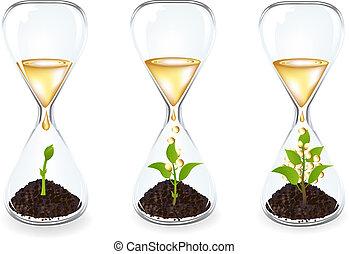 玻璃, clocks, 由于, 新芽, 硬幣, 以及, 黃金, 下降
