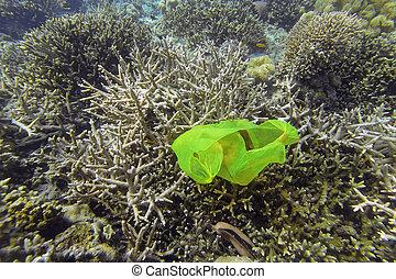 珊瑚礁, 污染
