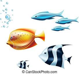 珊瑚, トロピカル, ベクトル, 黒, 砂洲, 白い魚