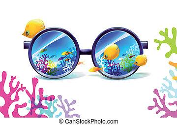 珊瑚, 白色, 太陽鏡, 礁石, 背景
