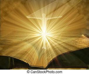 現われる, イラスト, 聖書, 開いた, キリスト, 白熱