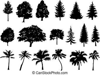 球果を結ぶ, セット, illustration., 木, 隔離された, 木, silhouette., forest., バックグラウンド。, ベクトル, 白, palm.