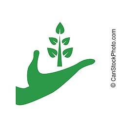 環境の保護