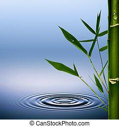 環境, 抽象的, 背景, bamboo.