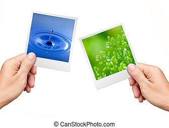 環境, 概念, 手, 保有物, 自然, 写真, 水, そして, 植物